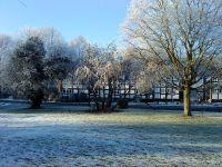 frosty2010b