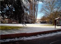 winterscene3